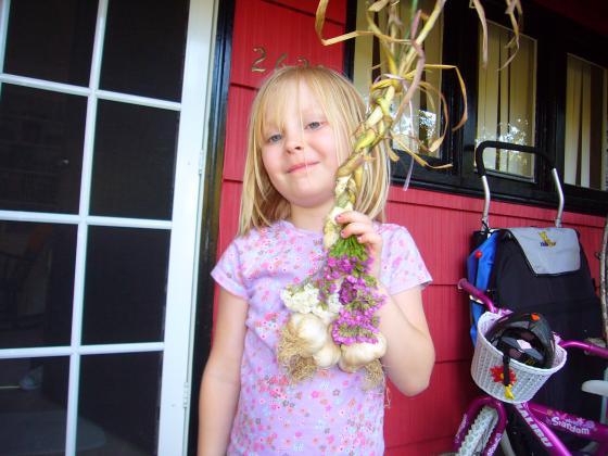 Sophie's garlic braid