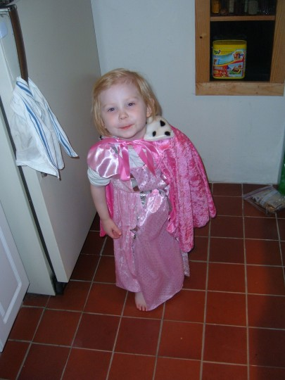 Sophie May 2005 -- 2 1/2 years old. She has a big box of dress up clothes but somehow she thought they were for everyday wear.